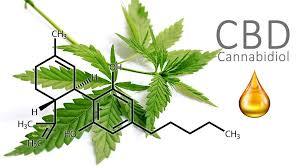 Molekyl CBD